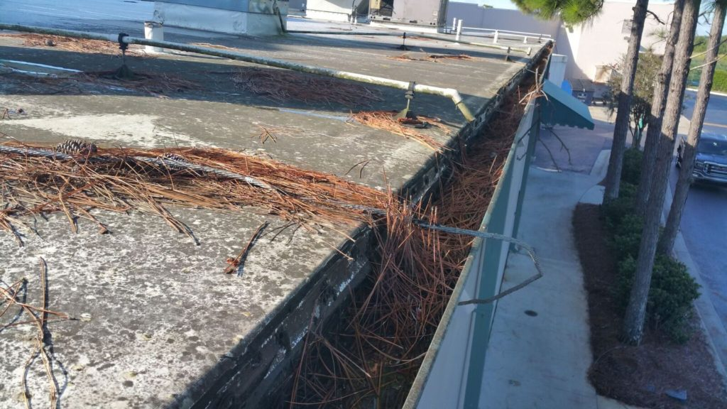 Debris on roof and in gutters