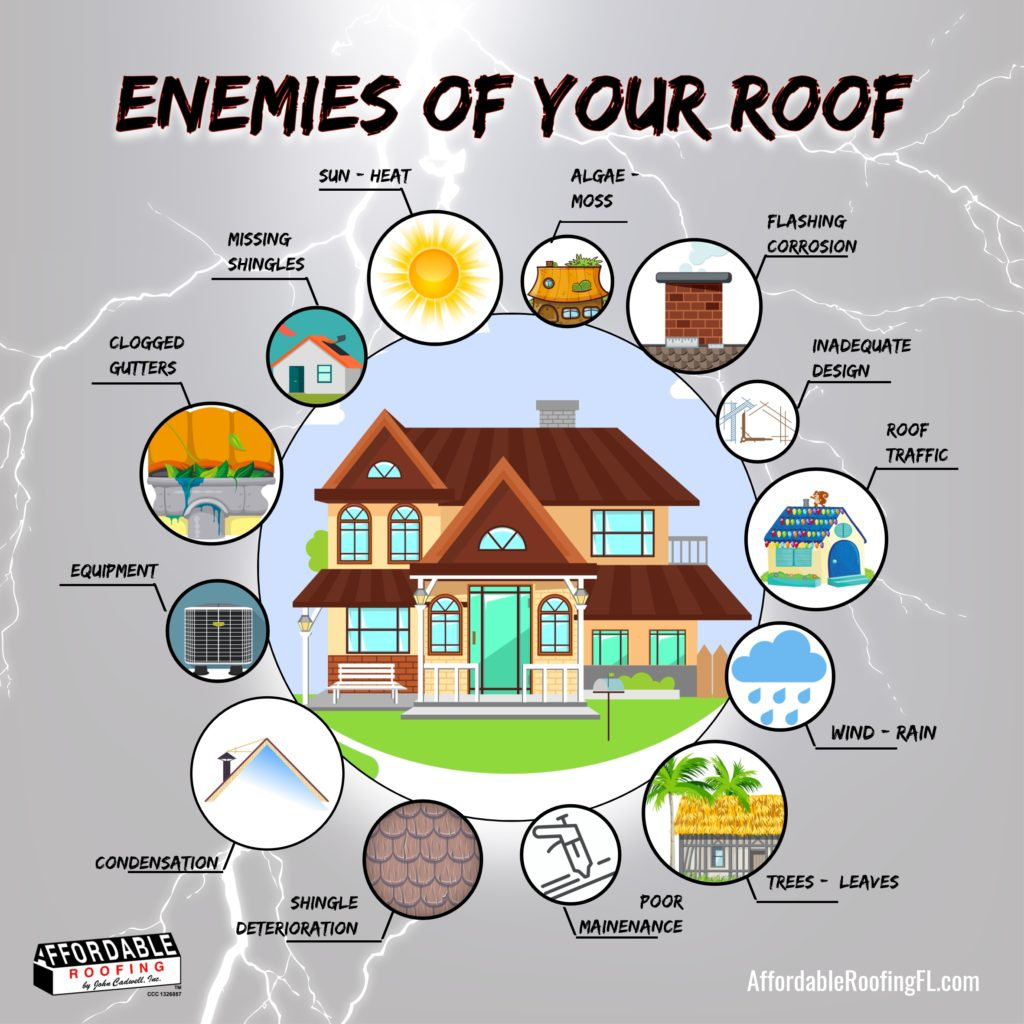 Enemies of the Roof Infographic